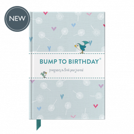 Bump to Birthday pregnancy & first year journal by from you to me