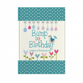 Bump to Birthday (Mummy & Mummy) pregnancy & first year journal cover